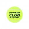 Club All Court